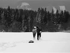 Winter photo - hikers crossing a snow-covered field